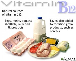 vitamin_B12_sources